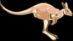 kangaroo-300x170